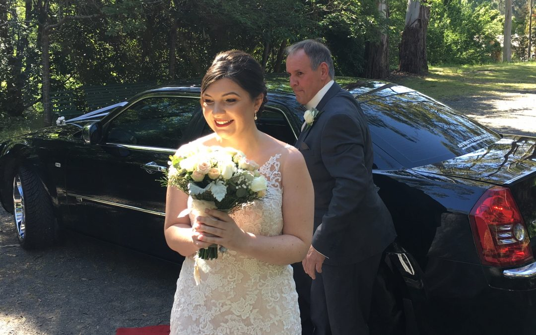 More Amazing Weddings with our Limousines!  We love it!!