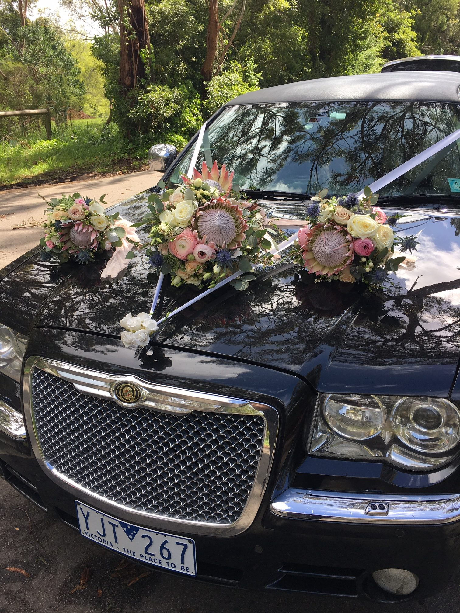 AFFINITY LIMOUSINE – We are still here!